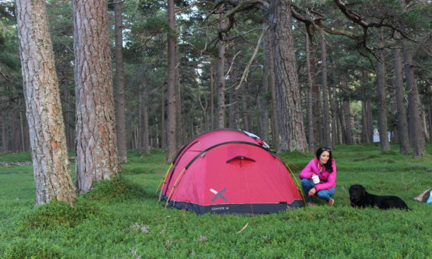 Gayle and her dog Toby wild camping near Braemar.