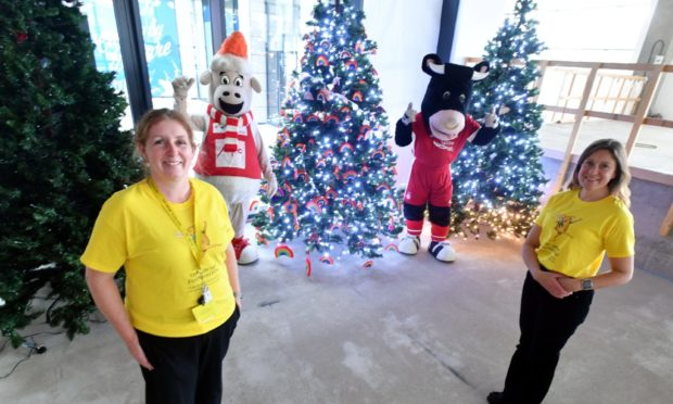 Archie Foundation Christmas trees