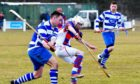 Shinty players jostle while in competition.
