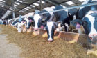 Soya was removed from the feeds of three of SRUC's dairy herds.
