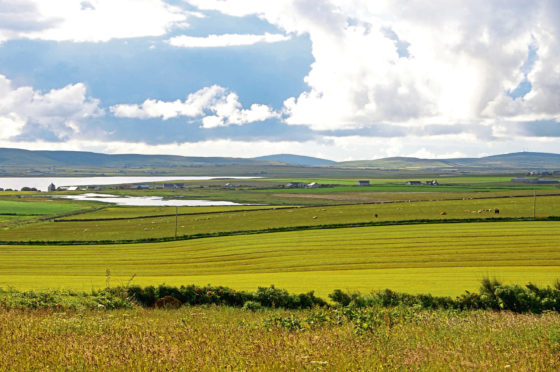 'Scottish agriculture has a key role to play in helping the country achieve ambitious emissions reduction targets.'