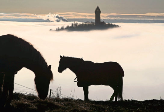 The Wallace Monument is shrouded in fog as it floats through the Carse of Stirling.