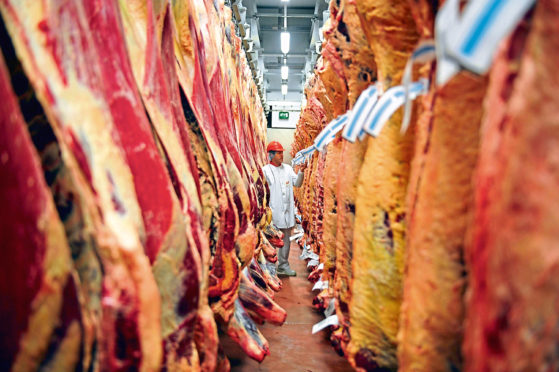 Red meat and offal exports were down 8%.