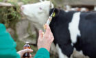 Farmers have halved the use of antibiotics on their livestock over the past three years, and the UK now has one of the lowest levels in Europe.