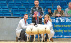 Beltex crosses from Rory Gregor, left, won last year's prime lambs show.