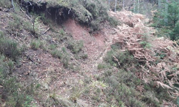 The Gully Monster black trail has closed after a recent inspection determined the route posed a potential danger to riders.