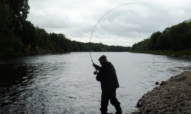 An angler on the River Spey near Craigellachie.