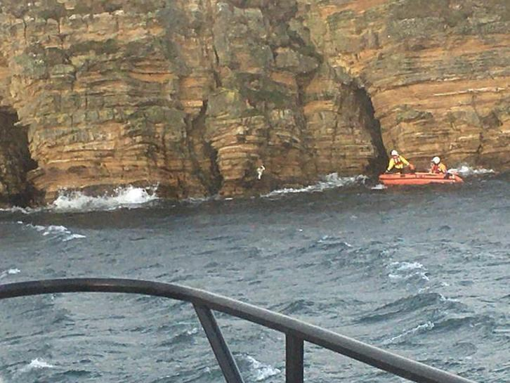 Blue the dog required rescue from the lifeboat crew after getting stuck on a cliff edge near Scapa Flow