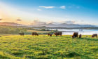 Agricultural Property Relief could be ditched under the new plans.