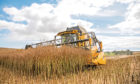 Growers in the north and north-east of Scotland fared better.
