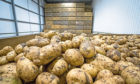 Growers will be asked to vote on the future of a levy for the potato sector in early 2021.