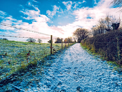 Farmers will be supported to improve public access for activities such as walking and cycling.