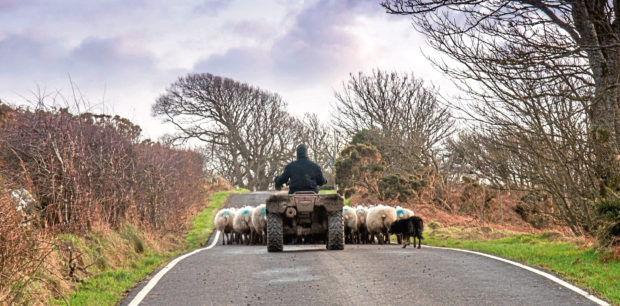 New provisions should help to safeguard the financial interests of tenant farmers when they retire.