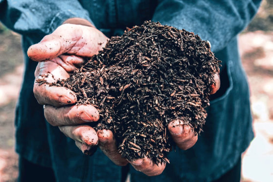 Soil health is one of the topics for discussion at the virtual workshops.