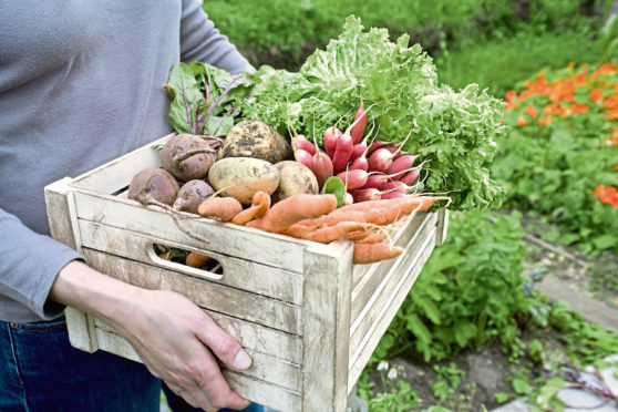 UK farmers could see imports of their produce banned by some EU countries.