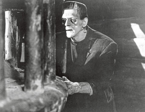 RESONANCE: Frankenstein, with its tale of a creature lashing out at its creator when shunned, has parallels with today's social media.