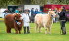 The Fife Show has been cancelled for the second year in a row, due to Covid-19.