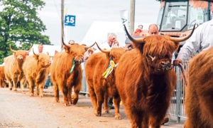 The Royal Highland Show is scheduled to take place on June 17-20.
