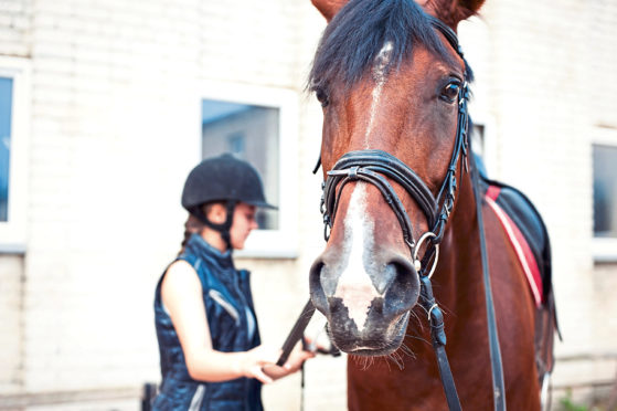 SRUC says the equine industry and students will benefit from the new centre.
