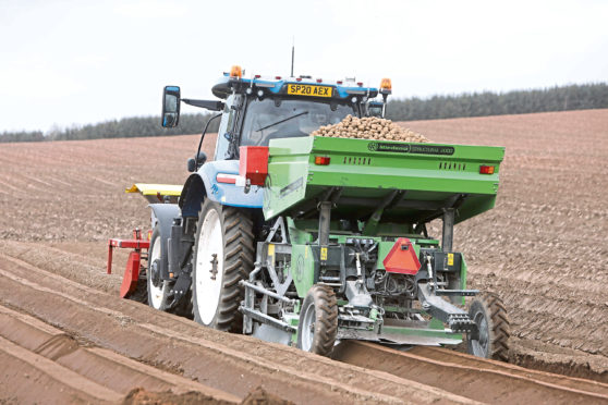 The industry wants to resume the export of British seed potatoes into Europe post-Brexit.
