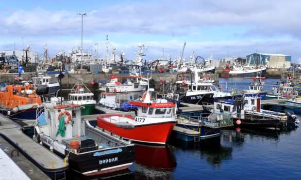 Many seafood exporters fear they will go out of businesses as a result of the delays.