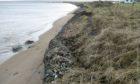 Fortrose beach