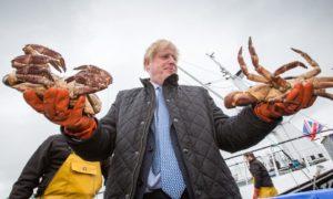 Brexit fish