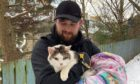 The cat was successfuly rescued in the early hours of this morning