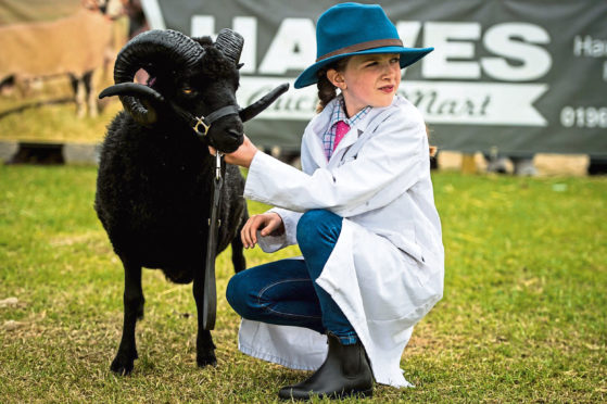 A young exhibitor at the 2019 show.