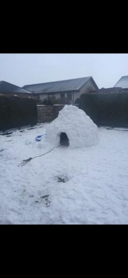 Riley and Finley in the igloo built for them by their dad Lee Page