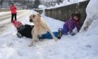 Schools across the north of Scotland will remain shut due to the wintry weather - which Alfie and Willow Campbell have been enjoying with dog Buddy