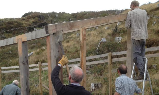 Sleat Community Trust working in Tormore Forest