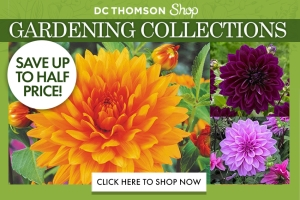 DC Thomson Shop Gardening
