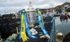 Bookmaker William Hill sponsors the Scottish Cup.