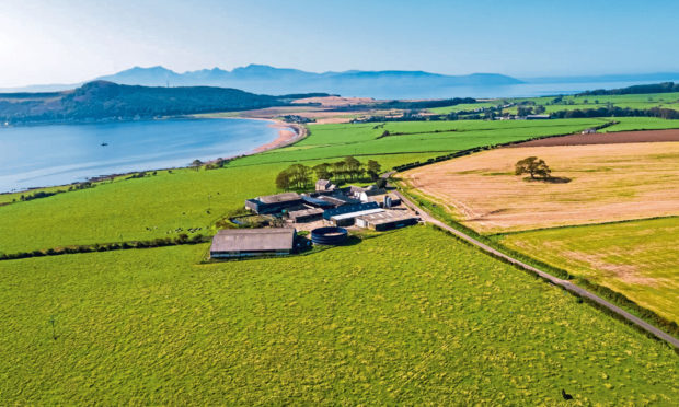 The Mount Stuart Trust says dairy farm steadings are available, and the new business could be based at either Kerrytonlia or Drumachloy.