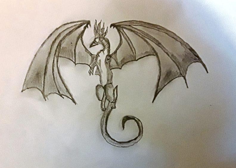 072 Sara Shetty Age: 12, Elgin Dragon