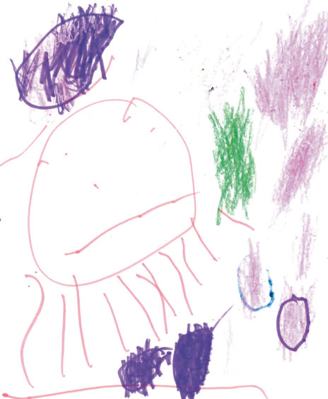 562 Gracie Lewington Age: 4, Aberdeen Harry (my horse) and the moon and the stars