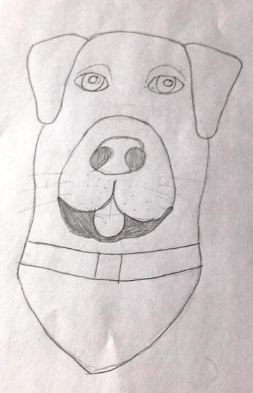 608 Fraser Paterson Age: 13, Aberdeen I've chosen my dog as my hero