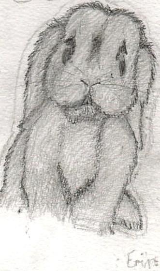 686 Erin Age: 11 Hero Bunny Blue