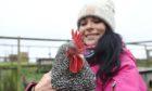 Gayle cuddles Hamish, a Scots Grey cockerel, at Murton Farm, near Forfar.