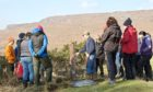SUPPORT: The Scottish Government's practical training for women in agriculture and women in rural economy provides 100% funding of up to £500.