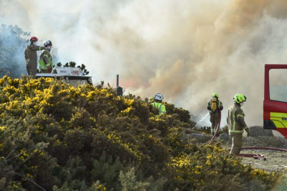 Fire crews at the scene yesterday. Picture by Jason Hedges