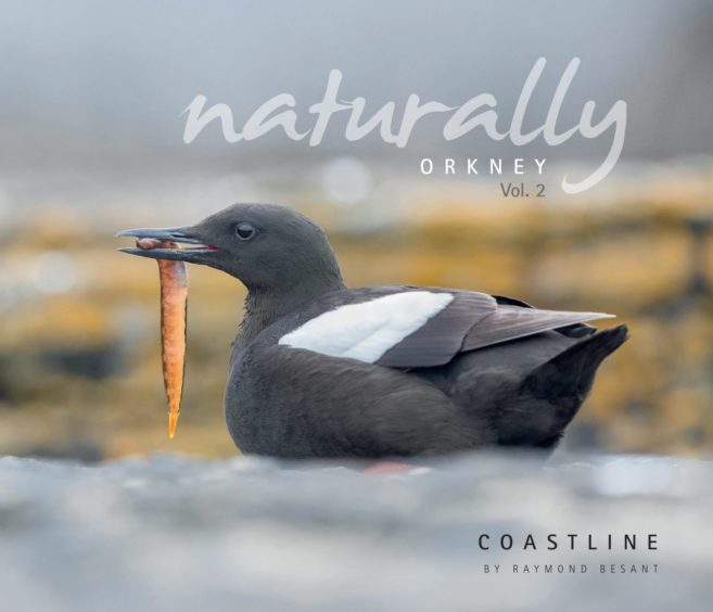 Second place: Naturally Orkney - Coastline written by Raymond Besant