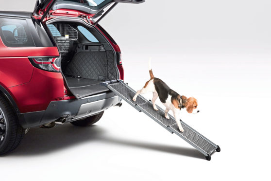 Most car makers offer their own dedicated dog accessories to make transporting man's best friend easy and comfortable
