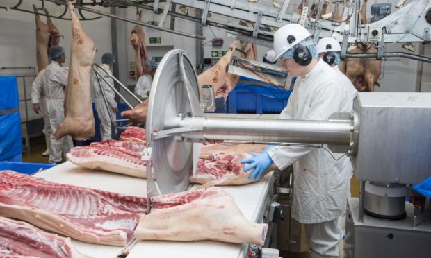CUT TO THE BONE: UK pig producers are facing falling prices – and rising feed costs.