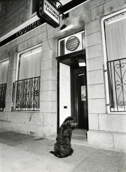 """1987-12-29 """"Press and Journal canine caring photographer Jim Love captured this poignant moment as one of man's best friends waited patiently on the doorstep of Torry's Victoria Lounge."""""""