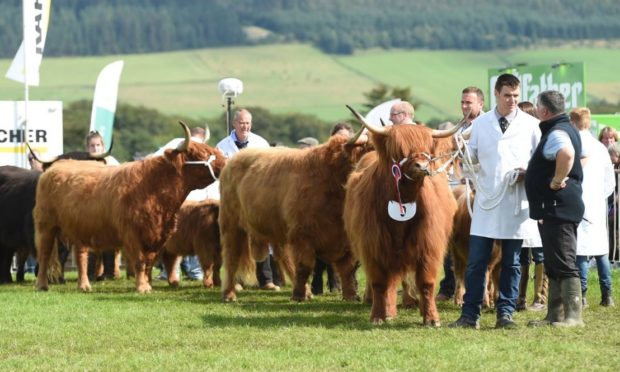 Keith Show is the largest agricultural event in Moray.