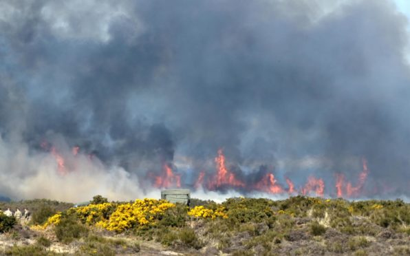 Last week a gorse fire took hold close to Fort George