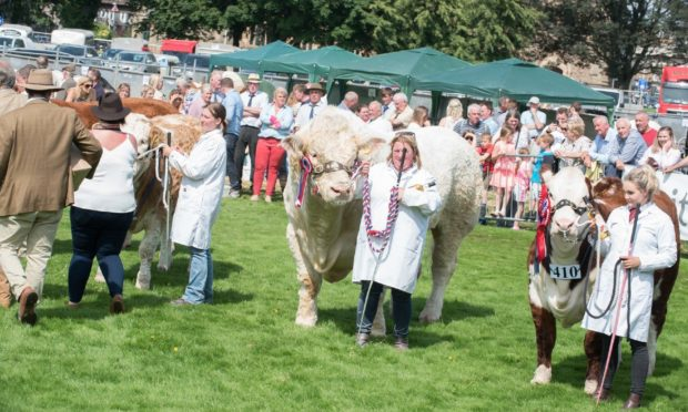 EVENTS: The Perthshire Agricultural Society has announced Perth Show will not take place in its traditional format.