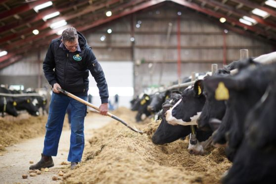 More than 8,000 Arla suppliers took part in the company's climate checks initiative.